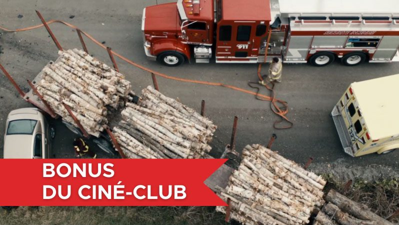 bonus-camion-2-p2dr0292qdiudw7v0rtgdf11y256wh5rsu9ica3pxc